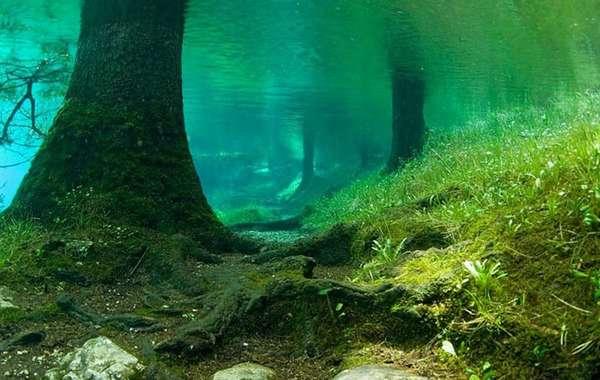 озера австрии Green Lake