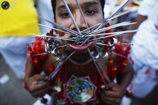 кровавый фестиваль в таиланде