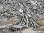 Озеро Скелетов в Гималаях