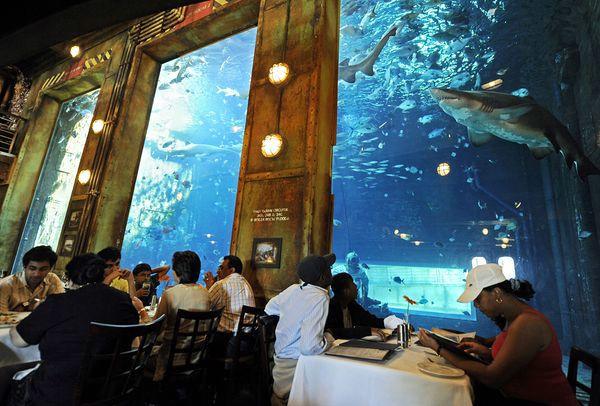 необычные рестораны