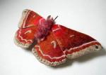 Удивительные ручные бабочки Юми Окита