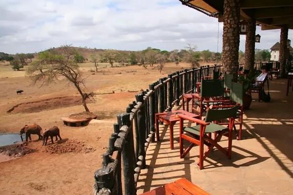 отель Sarova Salt Lick Game Lodge в Кении
