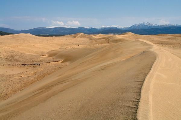 Чарские пески— удивительная пустыня в Сибири