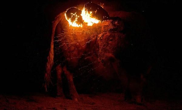 праздники +в испании Toro de Jubilo