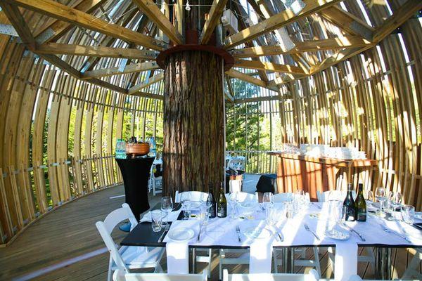 необычный ресторан в новой зеландии