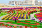 Dubai Miracle Garden — самый большой цветочный парк в мире