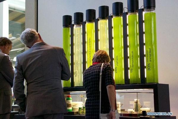 зоопарк микробов амстердам