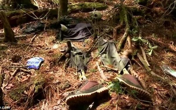 самоубийства в японском лесу Дзюкай