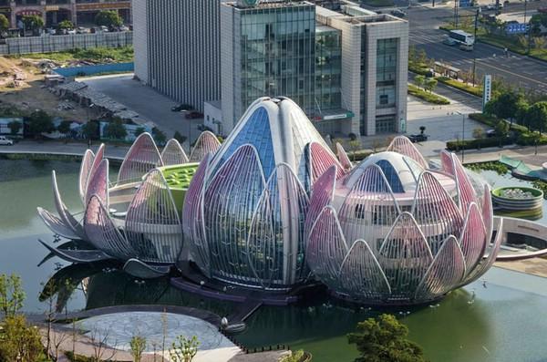 здание в форме лотоса китай
