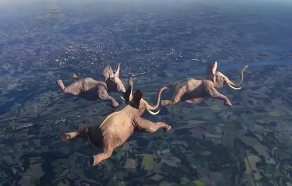 летающие слоны прикол