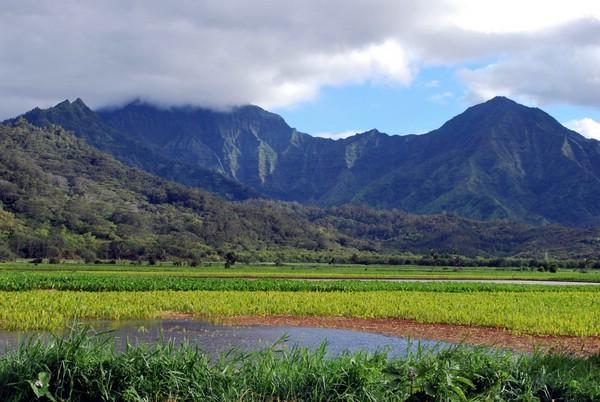 гавайские острова фото