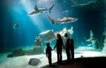 Acquario di Genova — аквариум Генуи