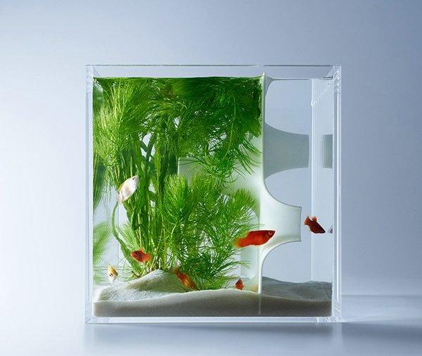 Стильные дизайнерские аквариумы Харука Мисава