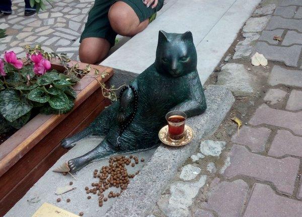 памятник ленивому коту
