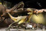 Прогулки с Динозаврами: Тиррелловский палеонтологический музей в Канаде